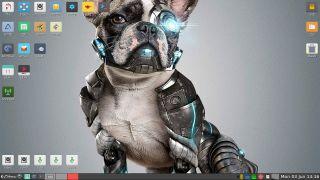 Cachorro de linux