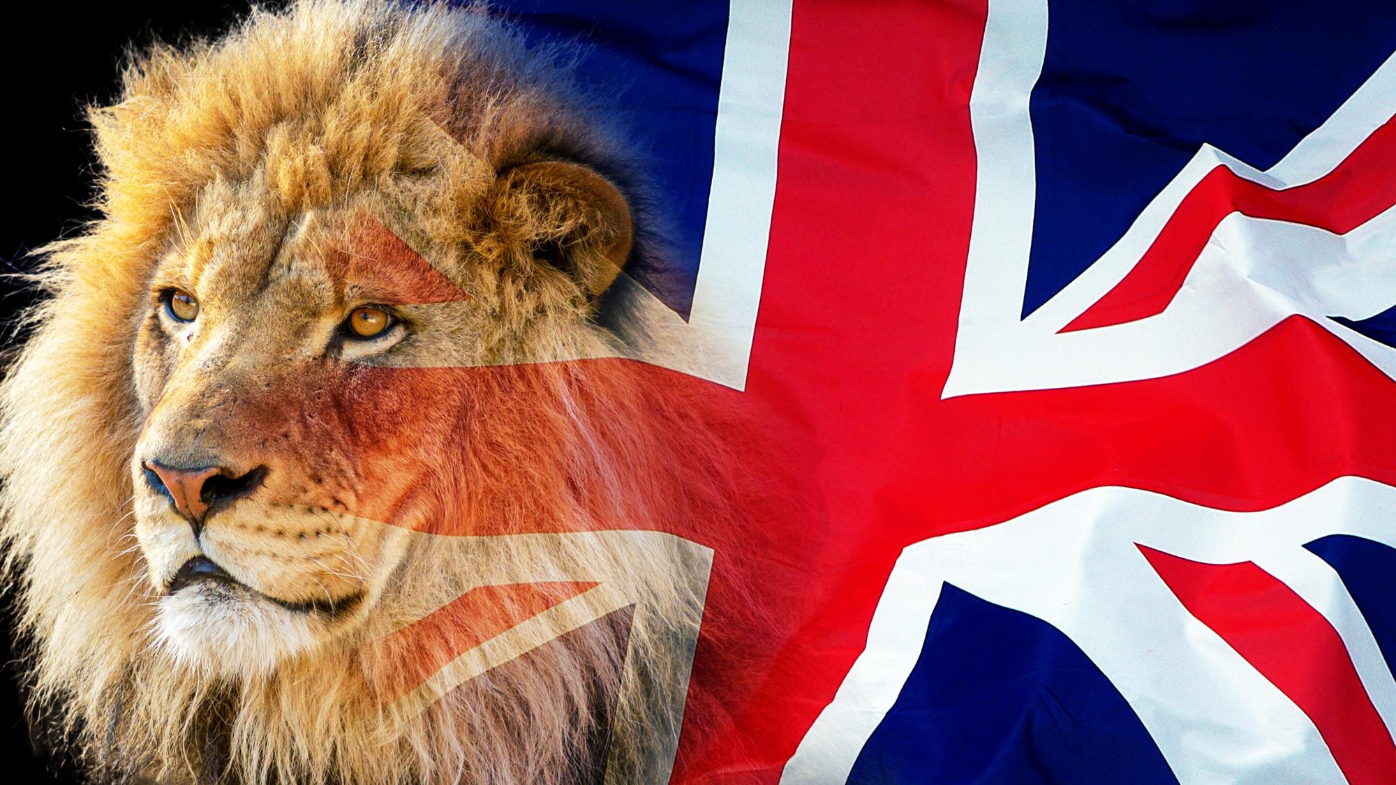 Leones británicos