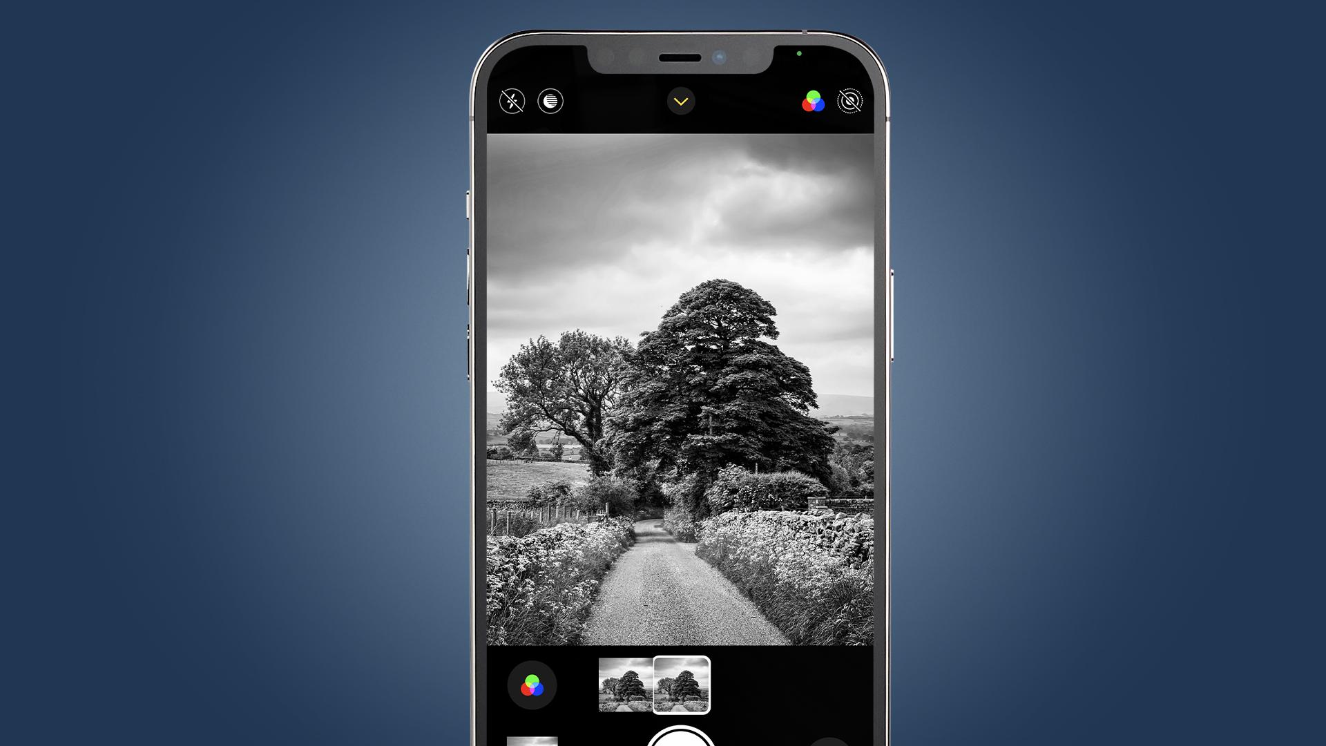 Un iPhone que muestra la captura de un árbol en blanco y negro