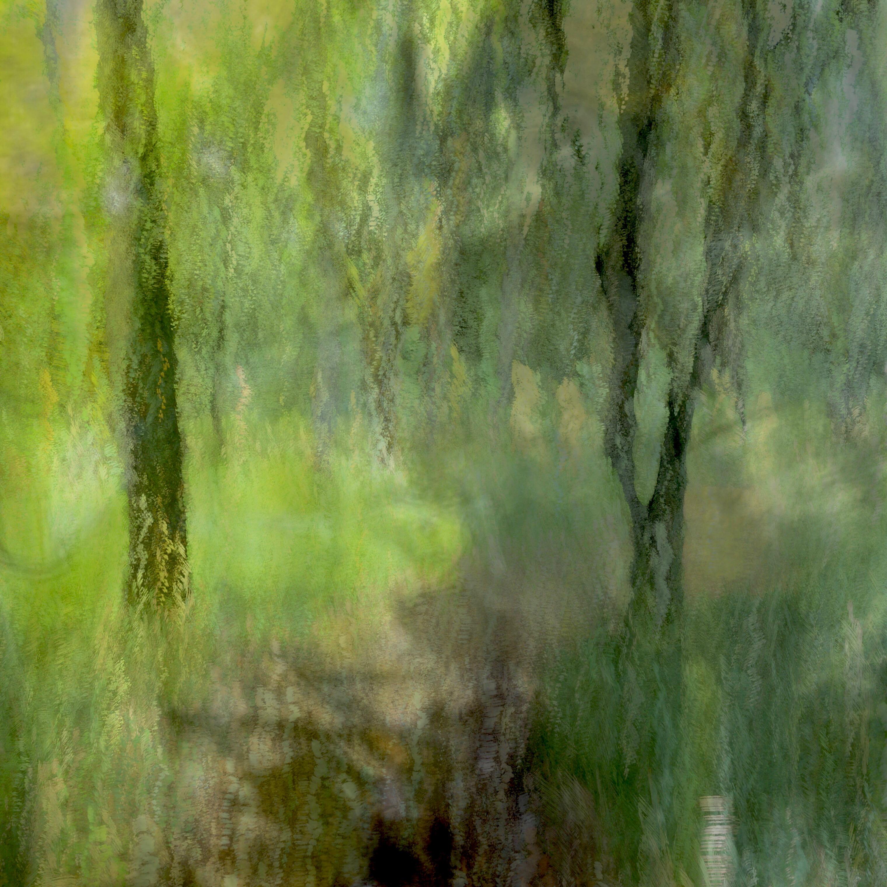 Un ejemplo de una foto del movimiento intencional de la cámara en el bosque