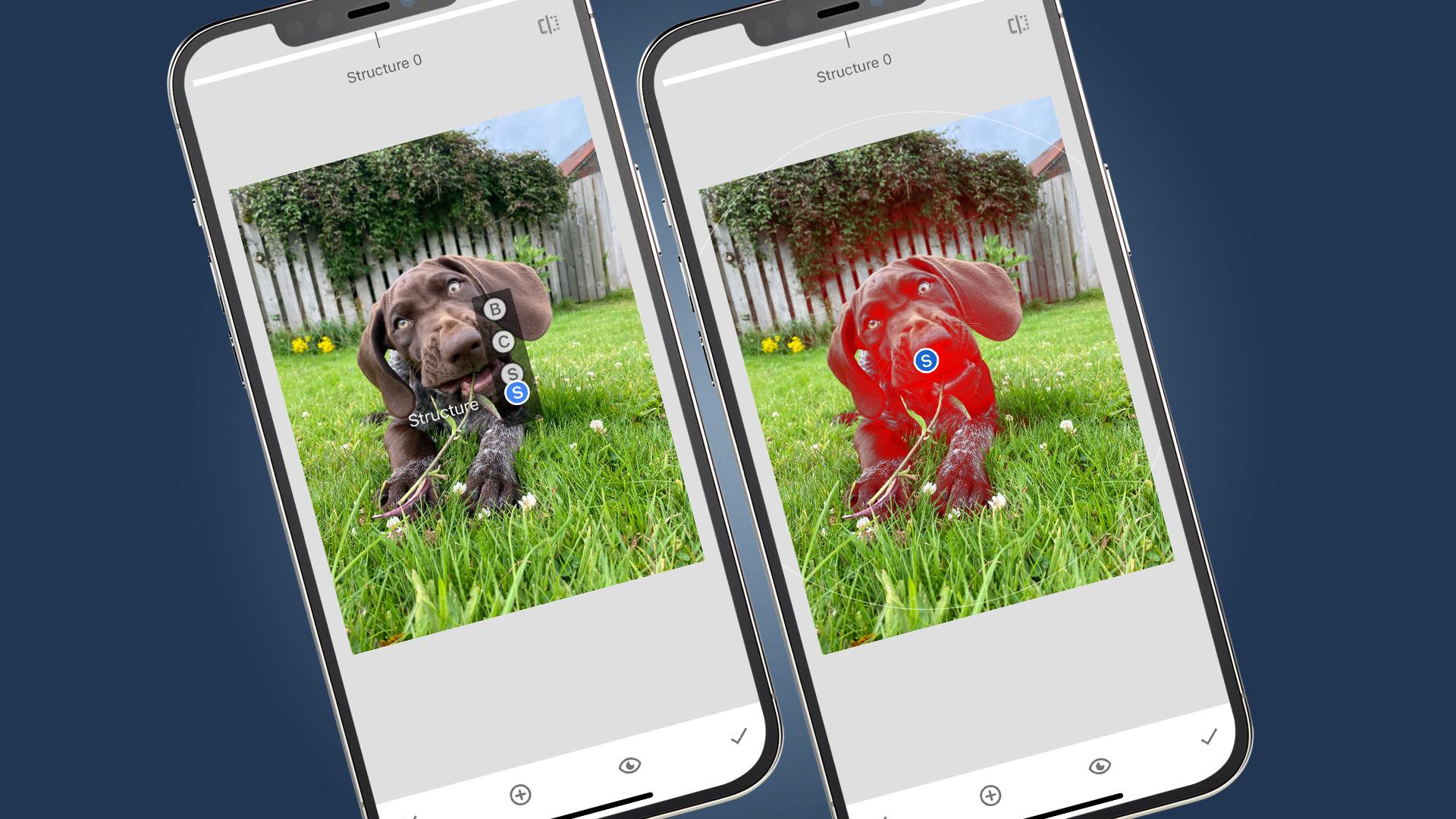 Dos teléfonos que muestran el retoque de una foto de perro en Snapseed
